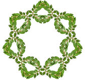 Decoration Garland Frame Wreath — Photo