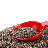 Chia seeds in red scoop — Stock Photo
