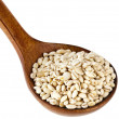 Pearl barley in a wooden spoon — Stock Photo #50789123