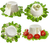 Collection set of Ricotta Cheese — Stock Photo