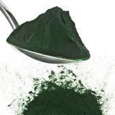 Spirulina powder — Stock Photo