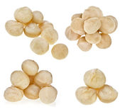 Macadamia nuts heap — Stock Photo