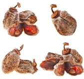 Dried persimmon — Stock Photo