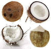Coconut fruits set — Stock Photo