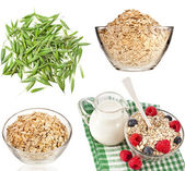Collection set of oat flakes — Stock Photo