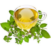 Tea cup with mint leaves — Stock Photo