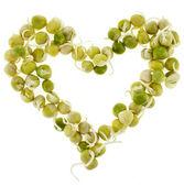 Heart shape made of Pea seeds — Stock Photo