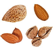 Almonds Seed collection set — Stock Photo