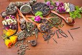 Assortment variety tea in wooden spoon — Stock Photo