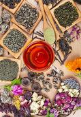 Glas Teetasse und Sammlung von Tee — Stockfoto