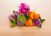 Herbal flower groups — Stock Photo