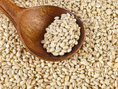 Pearl barley with wooden spoon — Stock Photo
