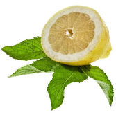 Fresh lemon with mint leaves — Stock Photo