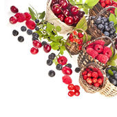 Collection of  wild berries mix in the basket — Stock Photo