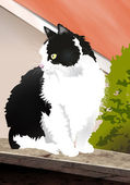 Black and white cat. — Stock Photo