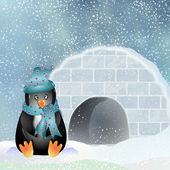 Penguin igloo — Stockfoto