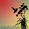Hummingbird silhouette — Stock Photo
