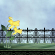 Stock Photo: Daffodil & fence