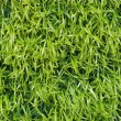 Plastic grass background — Stock Photo