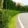 English garden with road — Stock Photo
