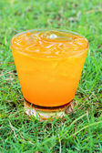 Orange juice on the grass. — Stok fotoğraf