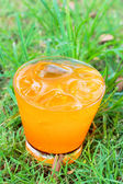 Orange juice on the grass. — Stock Photo