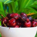 Cherry. — Stock Photo