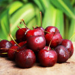 Cherry. — Stock Photo #33908167