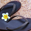 Shoes on beaches and frangipani. — Stock Photo #33950859