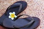 Shoes on beaches and frangipani. — Stock Photo