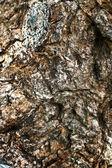 石の壁の背景テクスチャ - ビンテージ — ストック写真