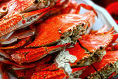 Steamed crabs close up — Stock Photo