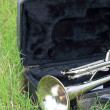 Trumpet on the green grass. — Stock Photo