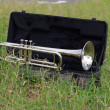 Stock Photo: Trumpet on green grass.