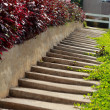 Stairs up — Stock Photo