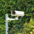 Cctv in the garden — Stock Photo