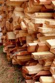 カットの木切り株の山 — ストック写真