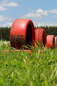 Spare tire on a green grass. — Stock Photo
