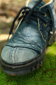 Old shoes on a moss green. — Stock Photo