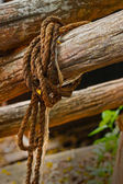Old rope tied to a piece of old wood. — Stock Photo
