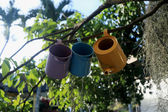 Ceramic teapots hanging on a tree — Stock Photo