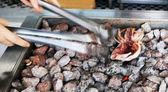 Squid grilled over hot coals — Stock Photo