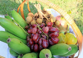 Fruits Basket — Stockfoto