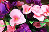 Begonia flowers artificial flowers — Foto de Stock