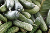 Cucumber in the market — Stock Photo