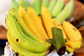 Close-up banana in the maket — Stock Photo