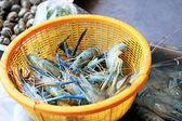 Fresh shrimp in the market — Photo