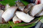 Fresh fish in the market. — Stock Photo