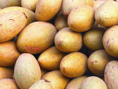 Sapodilla fruit pile in the background. — Stock Photo