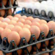 Eggs at the market stall — Stock Photo